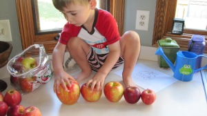 Have him arrange the apples from smallest to largest.