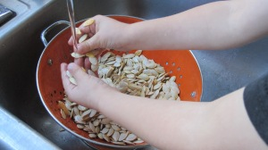 Once the seeds are out and separated from the pulp, wash them off.