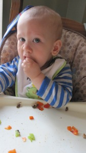 Well, the veggies anyway (if he's old enough to chew pretty well and you peel the pepper and chop them into small pieces anyway!)